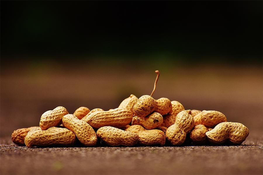 Arachidi scatenano violente reazioni allergiche. Come eliminare la loro presenza in produzione?